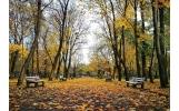 Reabilităm și extindem parcurile Nicolae Bălcescu și Teatru